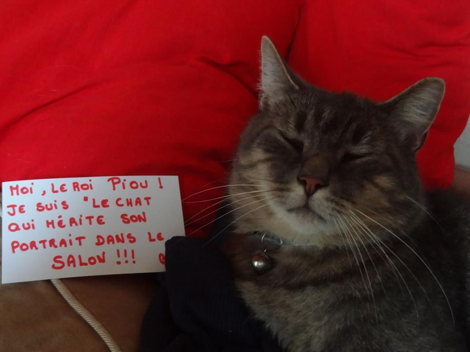 pancarte_de_la_honte_chat_piou_roi